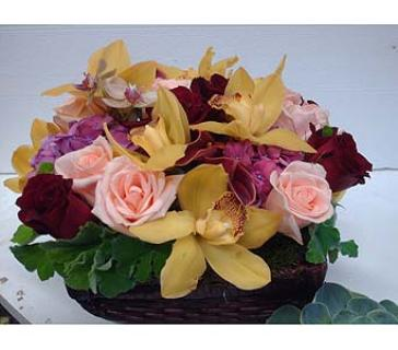 Box of Orchids and Roses