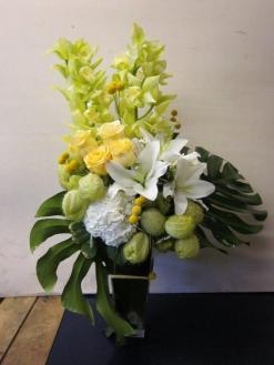Santa Monica Flowers Cymbidium Goddess