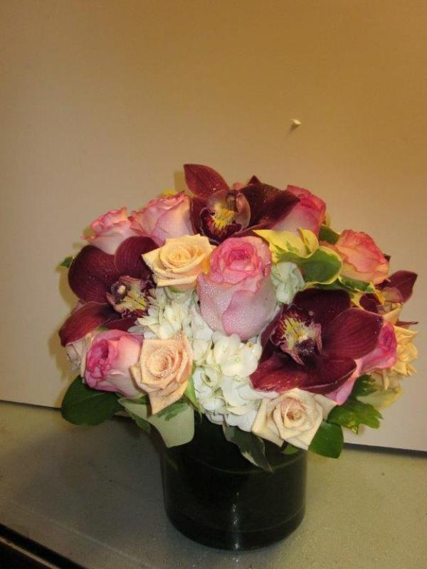 Ann\'s Flowers Double Delight